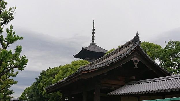 京の朝空の下