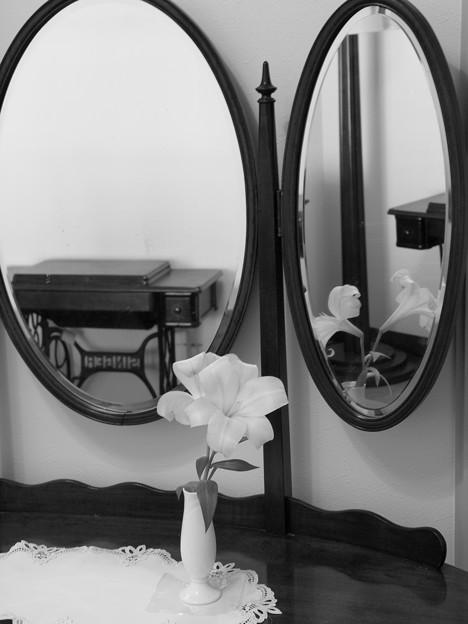 Photos: 鏡の中の虚像