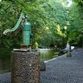Photos: 古井戸と清水に和む人と