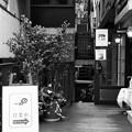 Photos: DEEPな空間 in 元町 -d