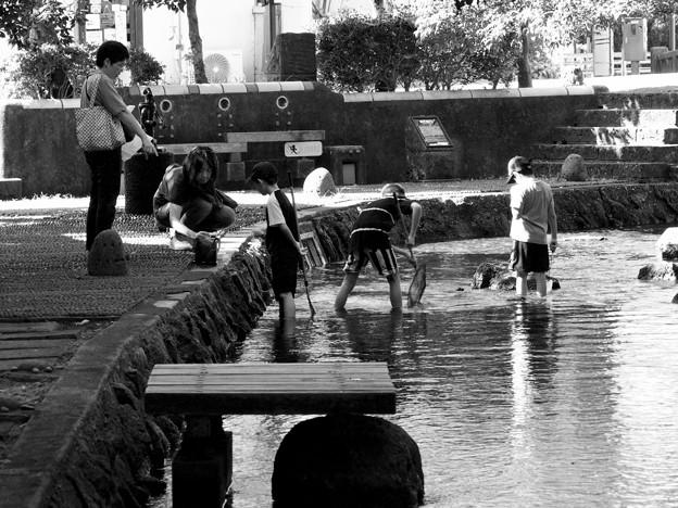 水辺で戯れる -b