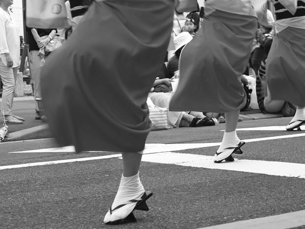 踊る阿呆に撮る阿呆…^^;