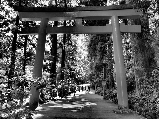 箱根神社は避暑地に非ず…