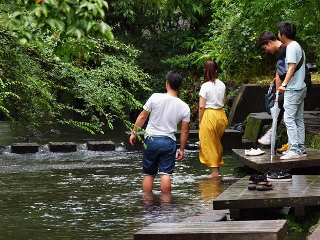 水辺を楽しむ若者たち