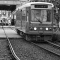 Tokyo Sakura tram