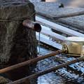 Photos: 湧き出る浄めの水