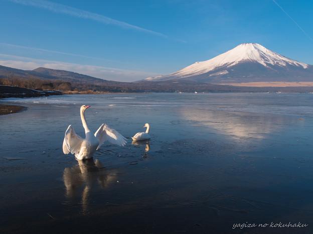 写真: 風景撮りの告白。#65