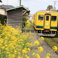 Photos: ムーミン列車