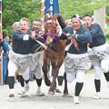Photos: 玉若酢命神社御霊会風流(8)H30,6,5