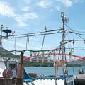 写真: 港の風景(6)H30,8,19