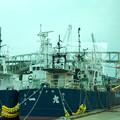 写真: 境港岸壁・運搬船(バスの窓から)H30,9,24
