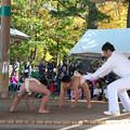 Photos: 五箇地区相撲大会(2)小2男・仕切り H30,11,3