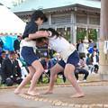 Photos: 五箇地区相撲大会(3)女の子も(1) H30,11,3