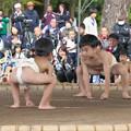 五箇地区相撲大会(7)豆力士(1)H30,11,3