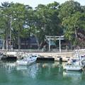 八尾川風景(4)