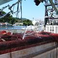 Photos: 港の風景(38) 巾着網本船(2)