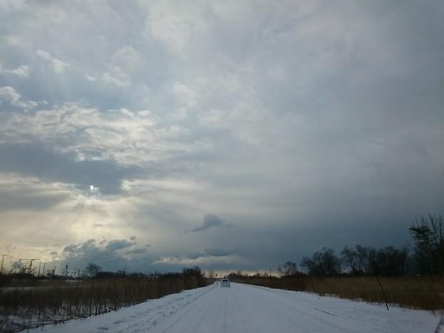 写真: 2月15日(木)