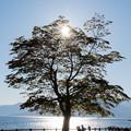 写真: 支笏湖 20180520-4