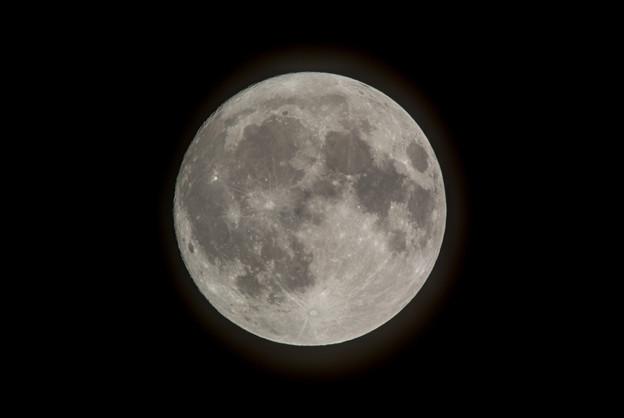 中秋の名月(十五夜)