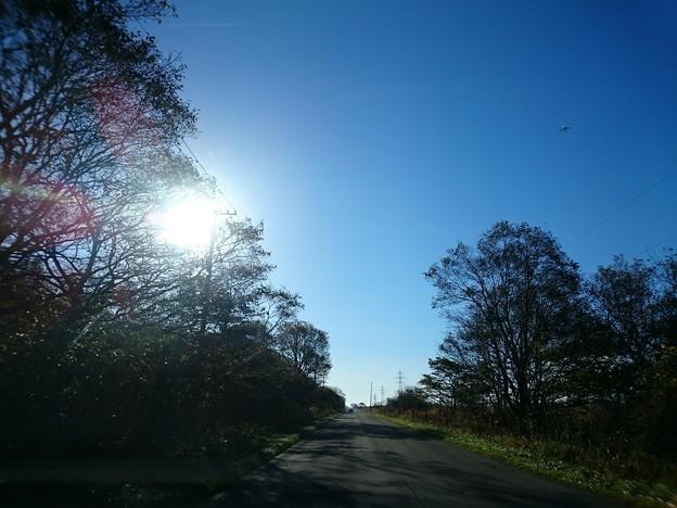 Photos: 10月19日(金)