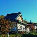 写真: 10月19日(金)の紅葉