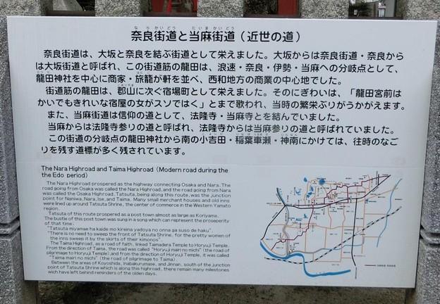 写真: 0207斑鳩の里5龍田神社4