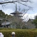 写真: 0207斑鳩の里7法隆寺
