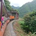トロッコ電車1