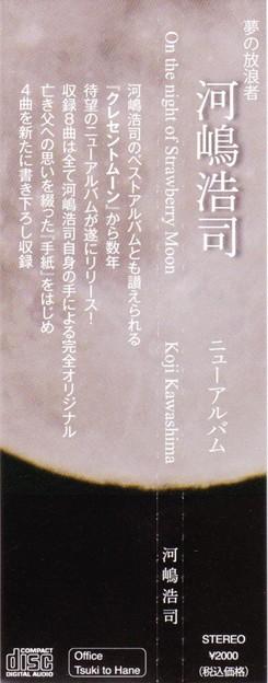 河嶋浩司-On the night of Strawberry Moon-4