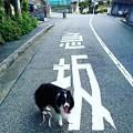 Instagram…(°∀°)ぴ2