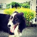 Instagram…(°∀°)ぴ5