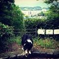 Instagram…(°∀°)ぴ10