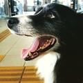 Instagram…(°∀°)ぴ12
