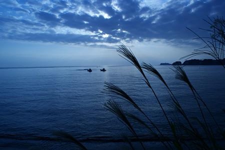 鎌倉の海とススキ1013s