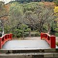 写真: 黄葉の鶴岡八幡宮1109f