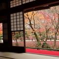 写真: 紅葉風景2015