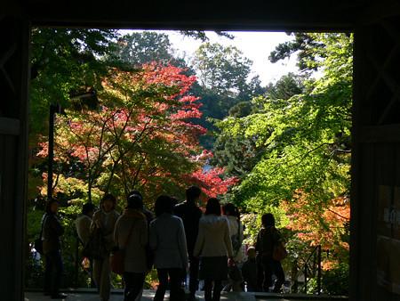 円覚寺総門1123te