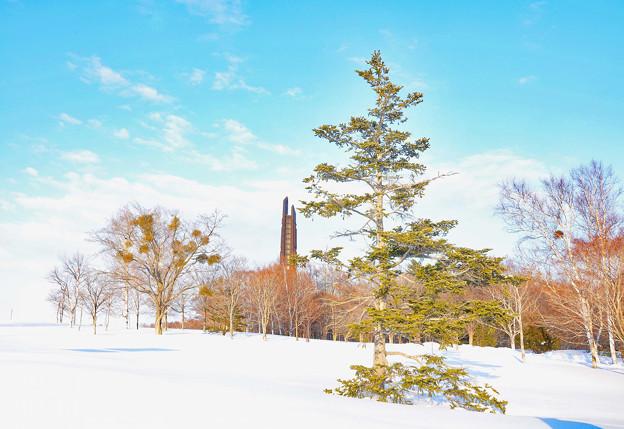 北の冬景色