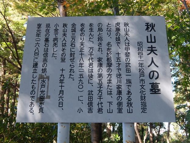 秋山夫人のお墓
