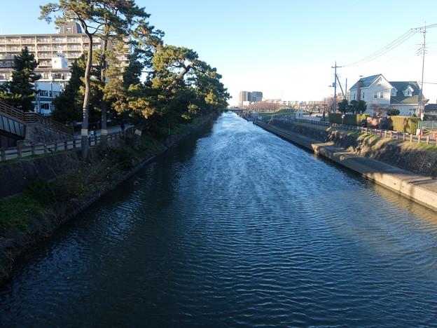 草加松並木と綾瀬川