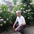 Photos: 紫陽花 & おじさん