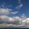 釣り船より:淡路島洲本方向を望む