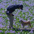 Photos: 愛犬と語らう