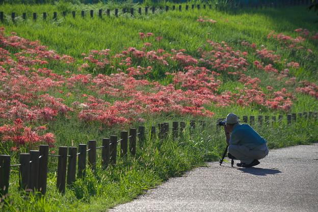 秋を撮る!