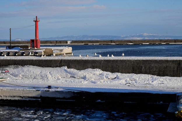 国後島と羅臼漁港