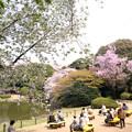 東京国立博物館 庭園