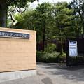 市川市吉澤ガーデンギャラリー