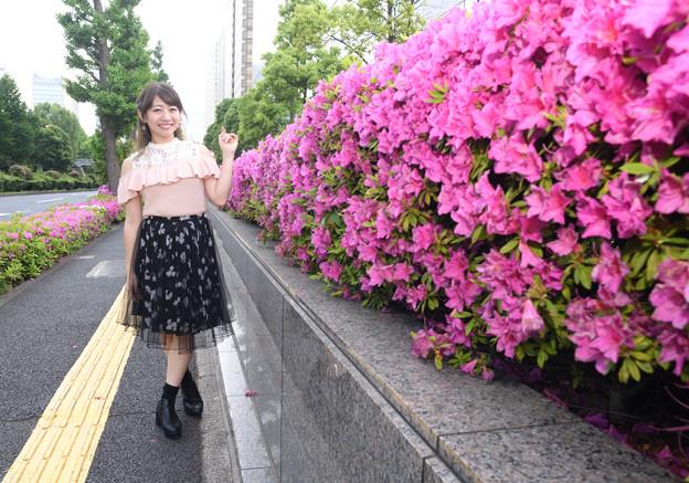 霞ヶ関界隈