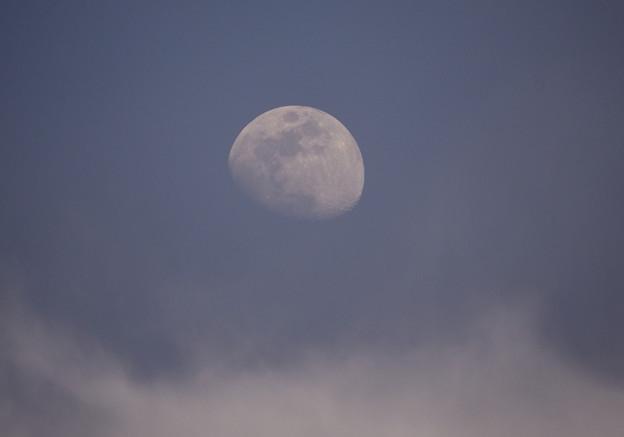 写真: 夕月
