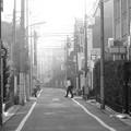 写真: 朝靄